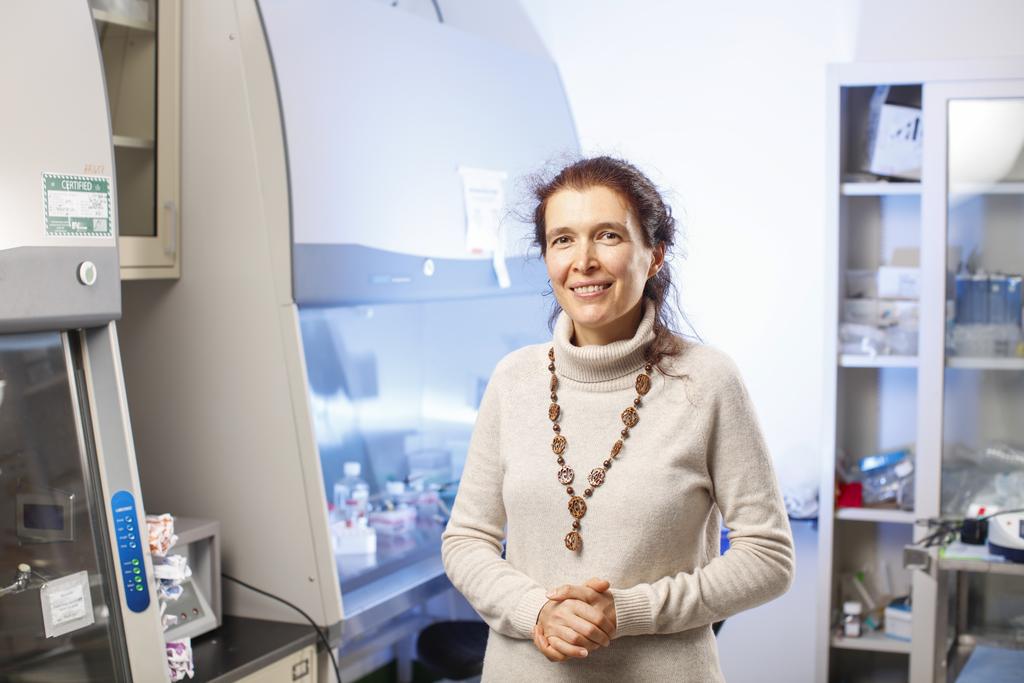 Dr. Vera Gorbunova