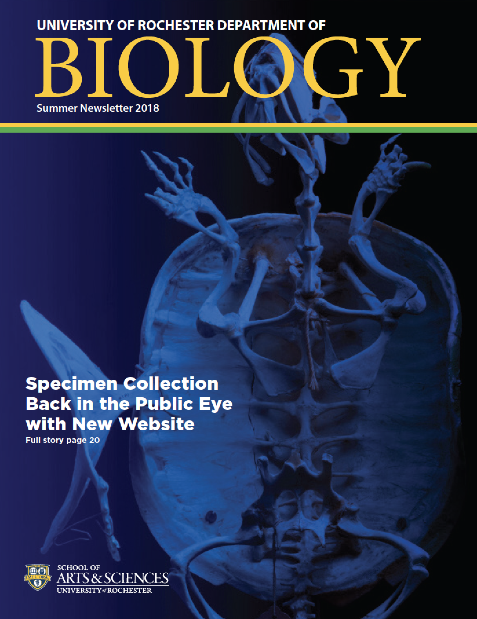 newsletters   department of biology   university of rochester